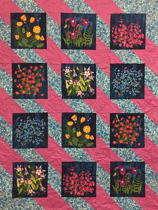 170825 dinomite wildflowers